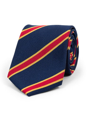 AN IVY - Navy Red Golden Spade Ties
